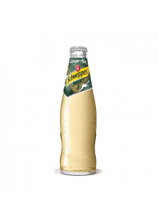Schweppes Ginger Ale Bottle 24x25cl.